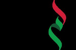 مؤسسة كابر لتأسيس الشركات وخدمات رجال الأعمال